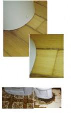 トイレの便器廻りの床